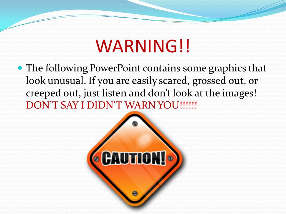 WARNING!. The following PowerPoint contains some graphics that look unusual.