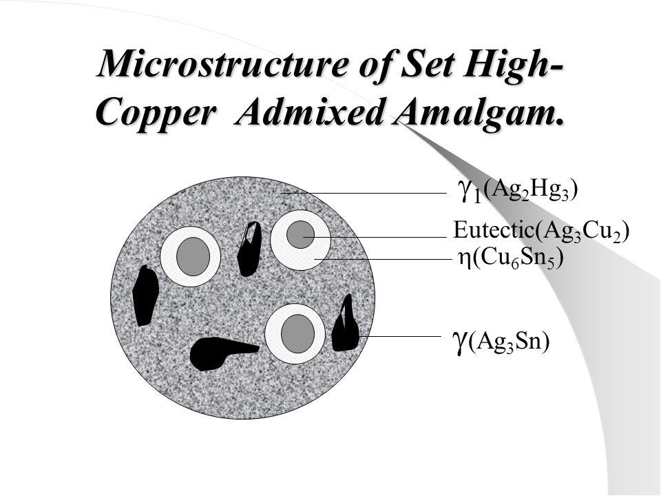 Microstructure of Set High- Copper Admixed Amalgam.  1 (Ag 2 Hg 3 )  (Ag 3 Sn) Eutectic(Ag 3 Cu 2 )  (Cu 6 Sn 5 )