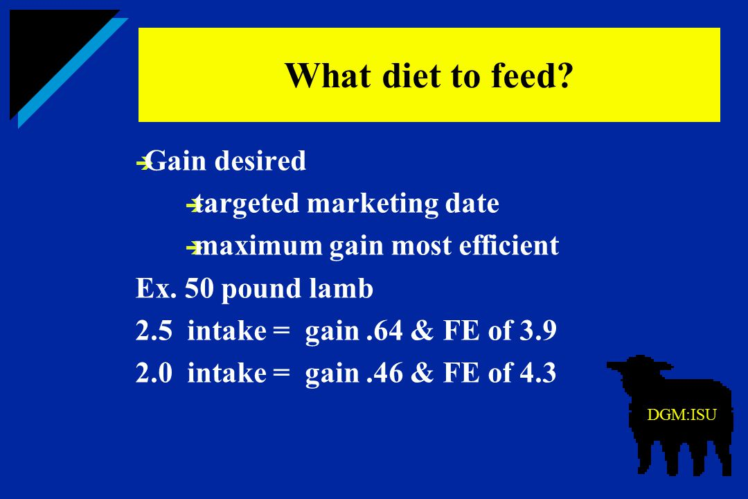  Gain desired  targeted marketing date  maximum gain most efficient Ex. 50 pound lamb 2.5 intake = gain.64 & FE of 3.9 2.0 intake = gain.46 & FE of