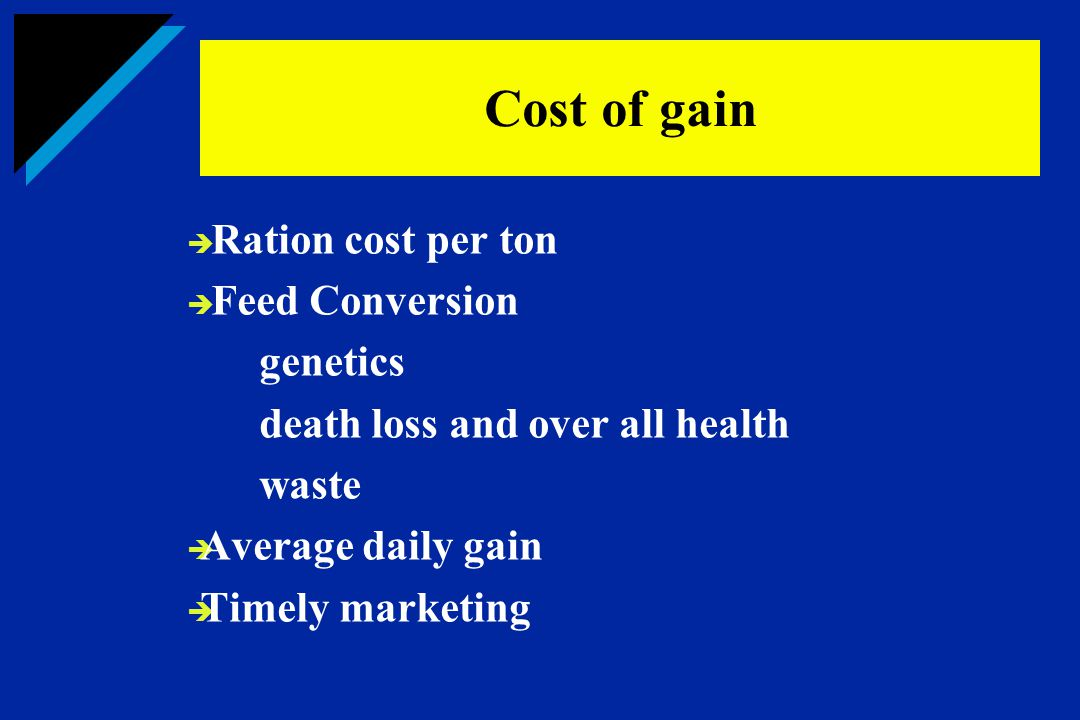  Ration cost per ton  Feed Conversion genetics death loss and over all health waste  Average daily gain  Timely marketing Cost of gain