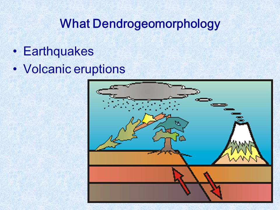 What Dendrogeomorphology Earthquakes Volcanic eruptions