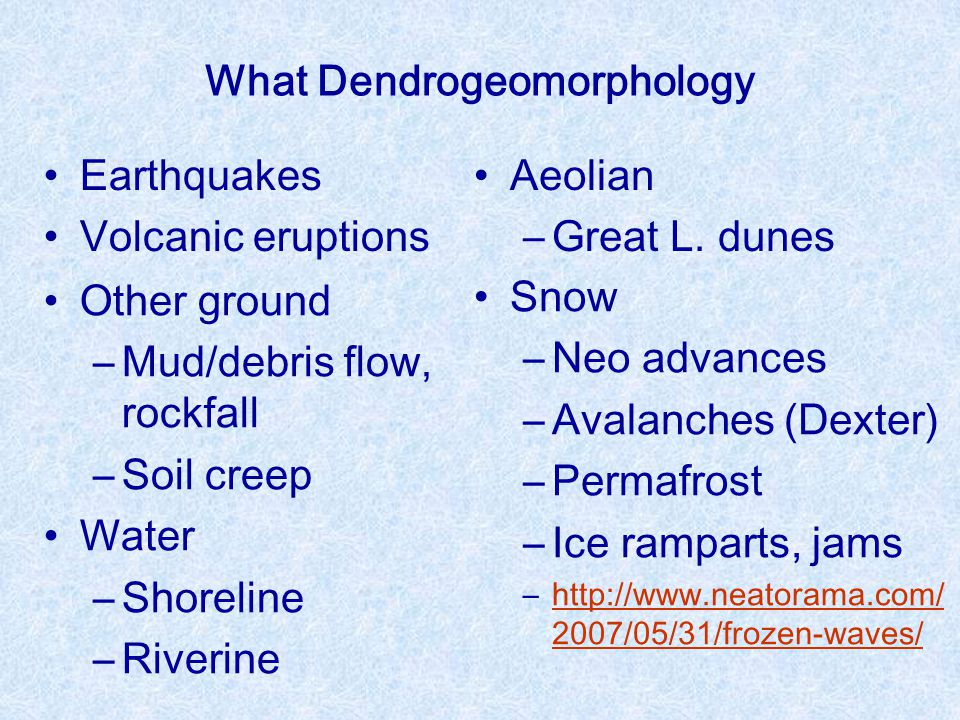 What Dendrogeomorphology Earthquakes Volcanic eruptions Other ground ―Mud/debris flow, rockfall ―Soil creep Water ―Shoreline ―Riverine Aeolian ―Great