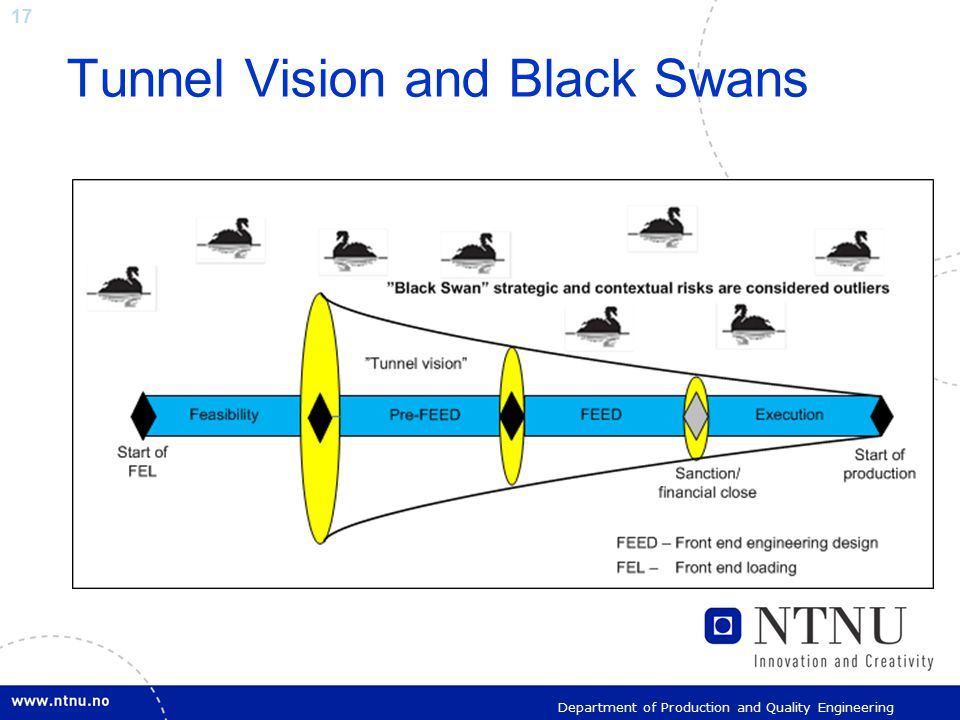17 Department of Production and Quality Engineering Tunnel Vision and Black Swans