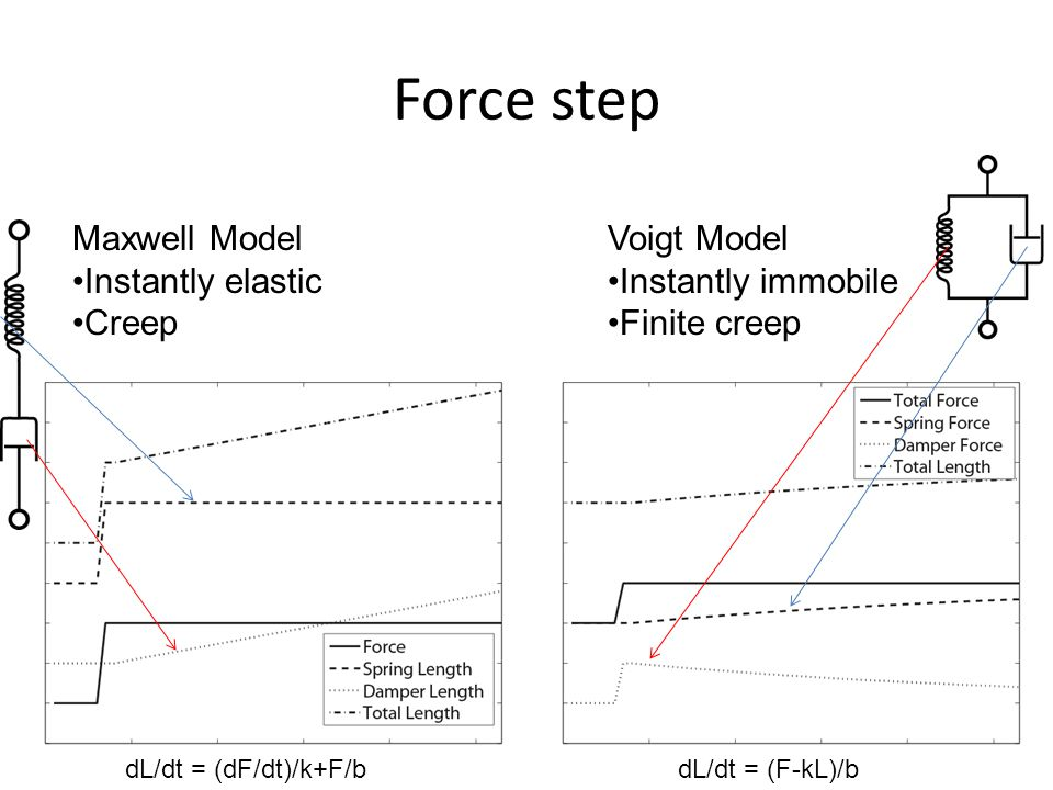 Dynamic Response Voigt Model: Force controlMaxwell Model: Length control First one is different Does not return to initial condition Out of phase