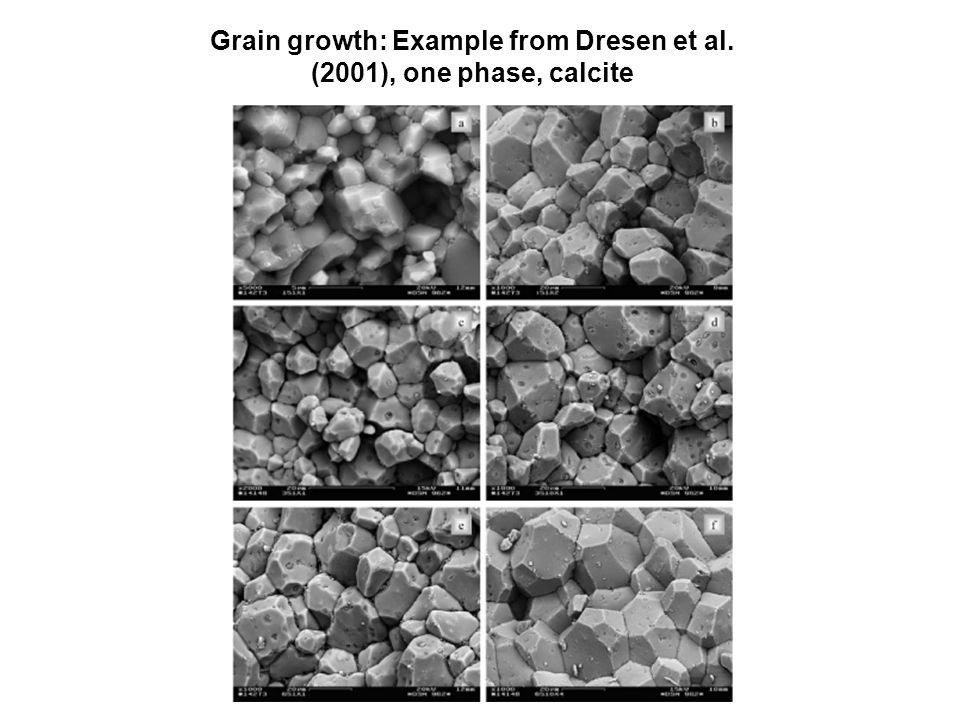 Grain growth: Example from Dresen et al. (2001), one phase, calcite