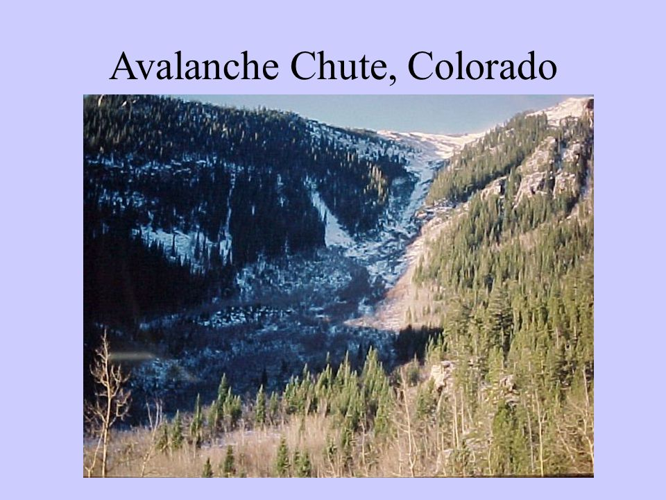 Avalanche Chute, Colorado