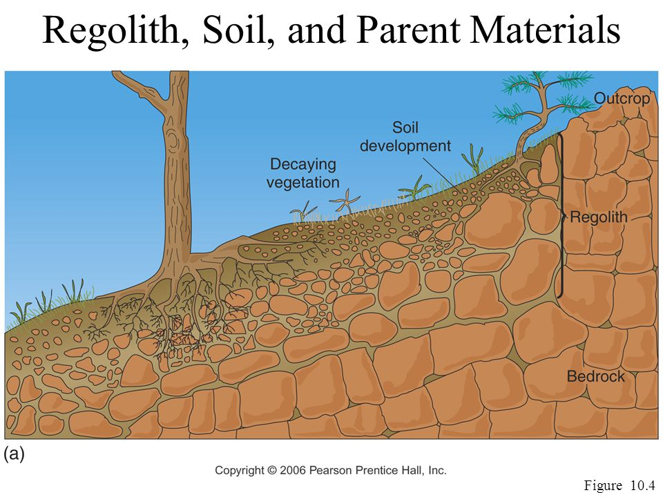 Regolith, Soil, and Parent Materials Figure 10.4