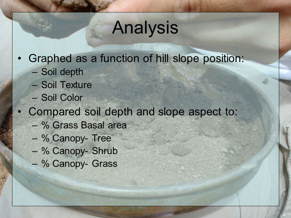 Analysis Graphed as a function of hill slope position: –Soil depth –Soil Texture –Soil Color Compared soil depth and slope aspect to: –% Grass Basal area –% Canopy- Tree –% Canopy- Shrub –% Canopy- Grass