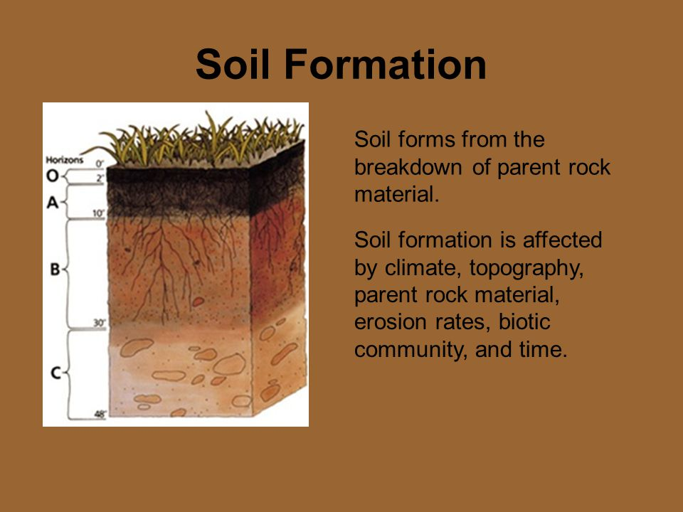 Soil Formation Soil forms from the breakdown of parent rock material.
