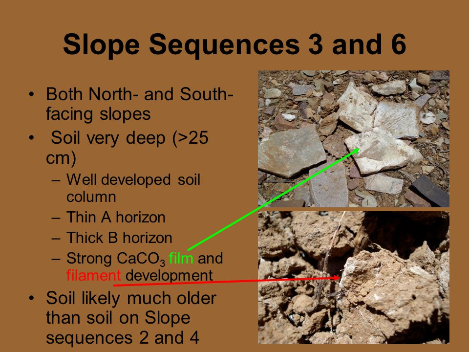 Slope Sequences 3 and 6 Both North- and South- facing slopes Soil very deep (>25 cm) –Well developed soil column –Thin A horizon –Thick B horizon –Strong CaCO 3 film and filament development Soil likely much older than soil on Slope sequences 2 and 4