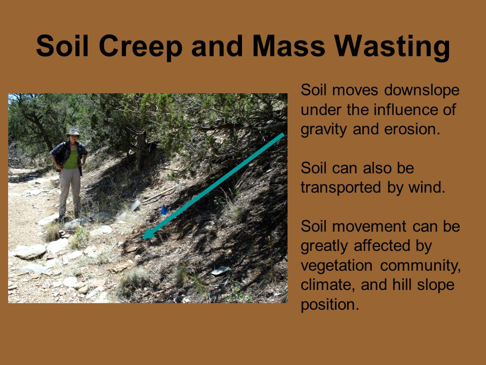 Soil Creep and Mass Wasting Soil moves downslope under the influence of gravity and erosion.
