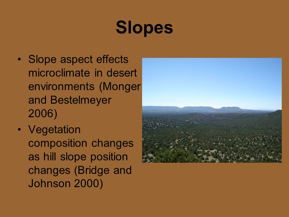 Slopes Slope aspect effects microclimate in desert environments (Monger and Bestelmeyer 2006) Vegetation composition changes as hill slope position changes (Bridge and Johnson 2000)