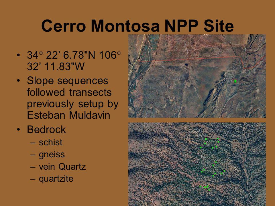 Cerro Montosa NPP Site 34  22' 6.78