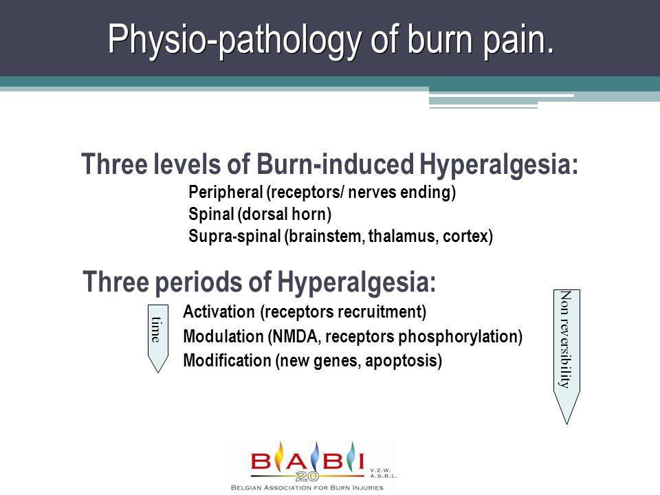 Physio-pathology of burn pain. Three periods of Hyperalgesia: Activation (receptors recruitment) Modulation (NMDA, receptors phosphorylation) Modifica