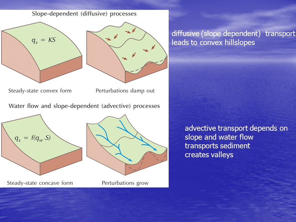 diffusive (slope dependent) transport leads to convex hillslopes advective transport depends on slope and water flow transports sediment creates valleys