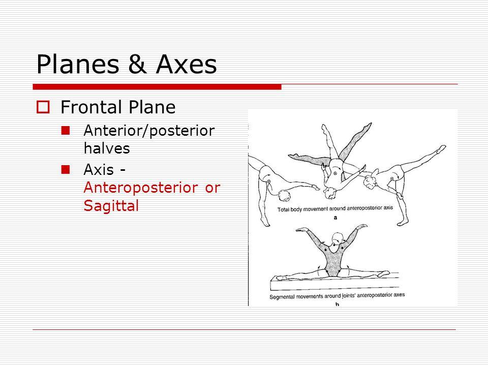 Planes & Axes  Frontal Plane Anterior/posterior halves Axis - Anteroposterior or Sagittal