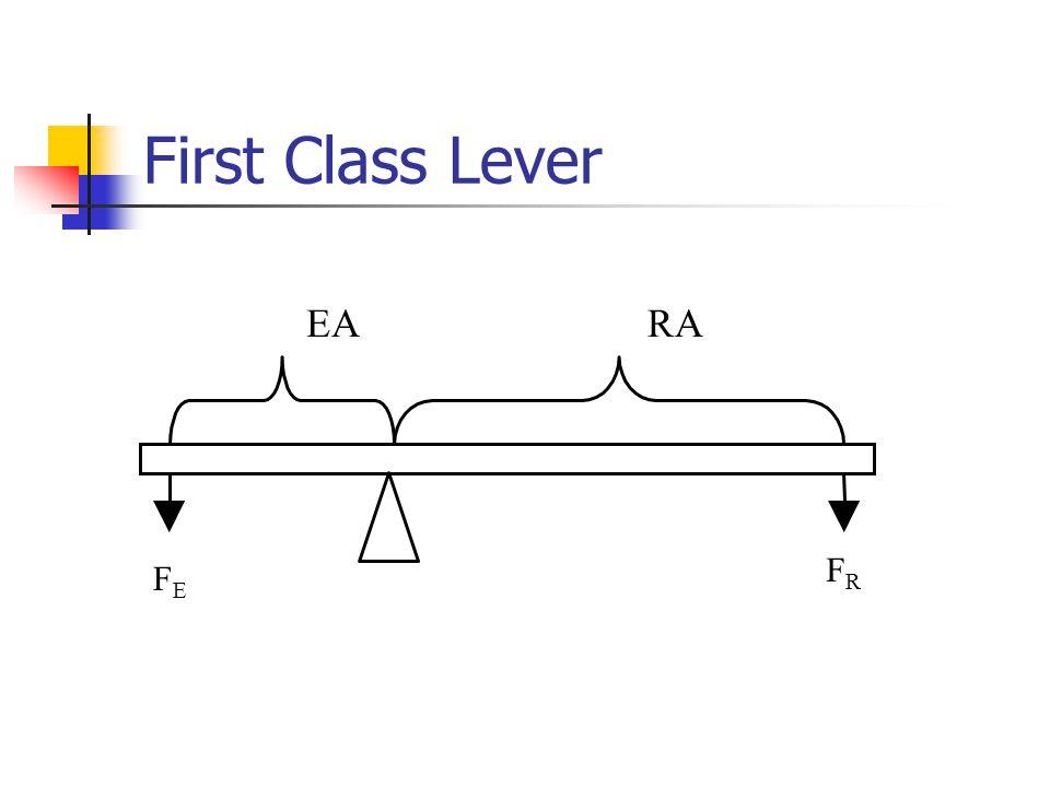 First Class Lever EARA FEFE FRFR