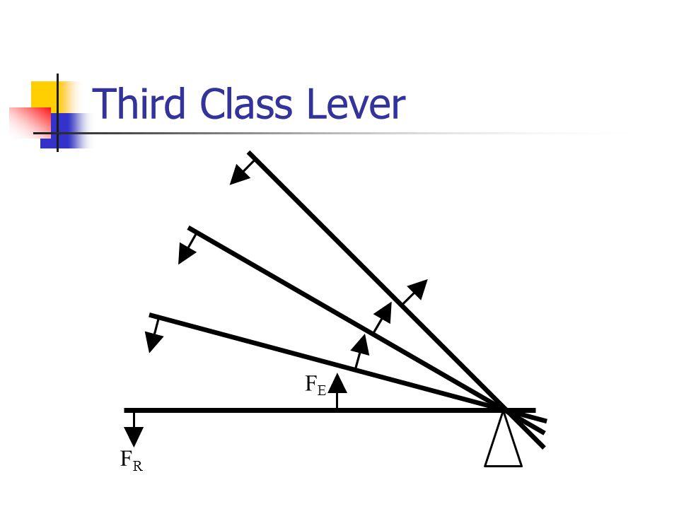 Third Class Lever FRFR FEFE