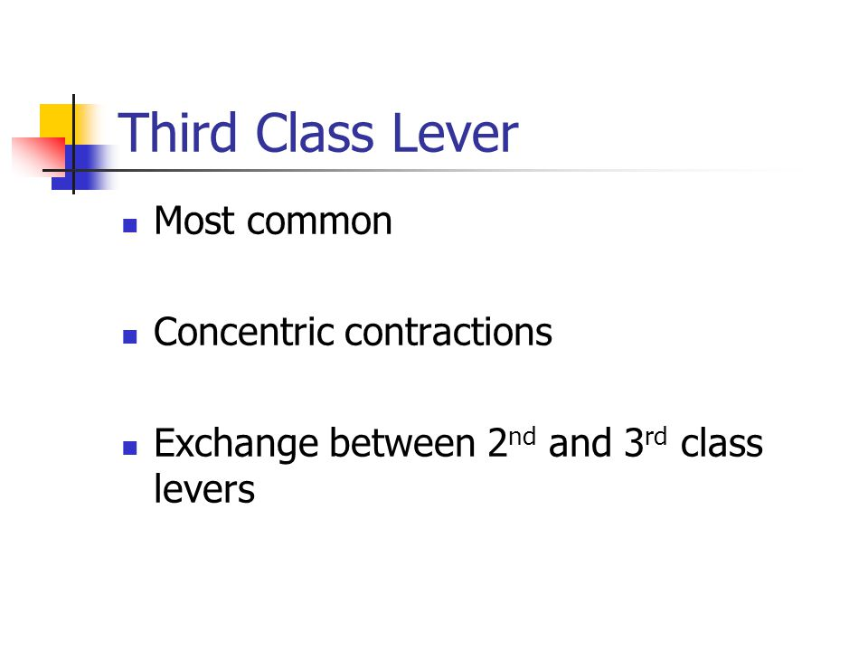 Third Class Lever Most common Concentric contractions Exchange between 2 nd and 3 rd class levers