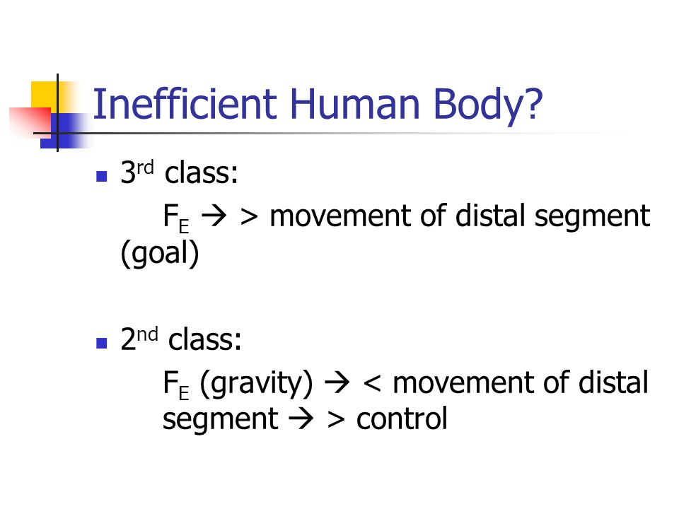 Inefficient Human Body.