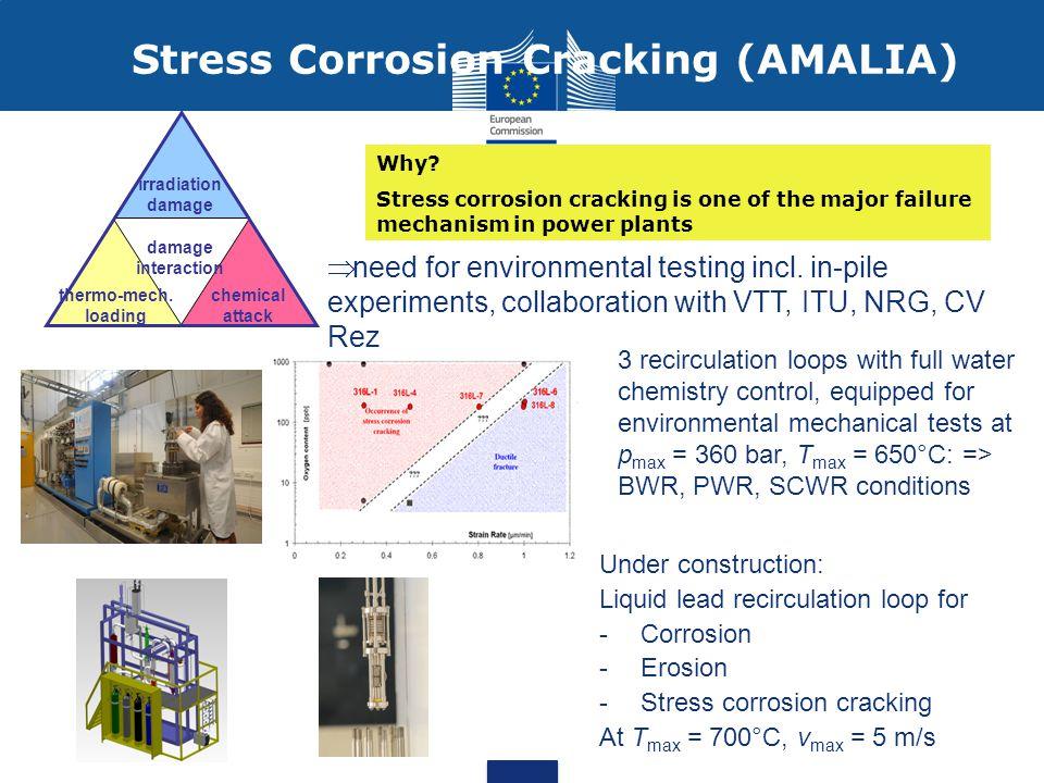 Stress Corrosion Cracking (AMALIA) damage interaction irradiation damage thermo-mech.