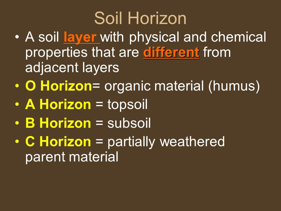 Soil Horizon differentA soil layer with physical and chemical properties that are different from adjacent layers O Horizon= organic material (humus) A Horizon = topsoil B Horizon = subsoil C Horizon = partially weathered parent material