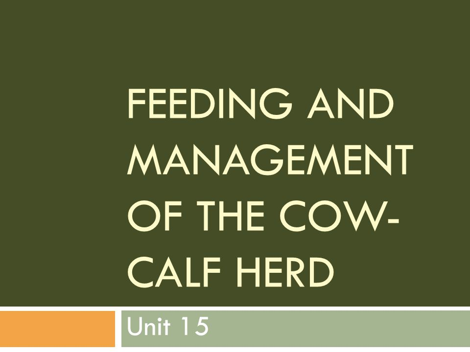 FEEDING AND MANAGEMENT OF THE COW- CALF HERD Unit 15