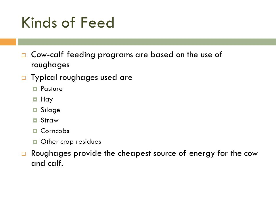 Kinds of Feed  Cow-calf feeding programs are based on the use of roughages  Typical roughages used are  Pasture  Hay  Silage  Straw  Corncobs 