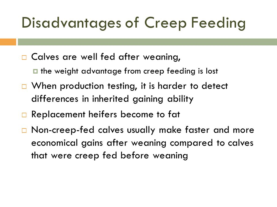 Disadvantages of Creep Feeding  Calves are well fed after weaning,  the weight advantage from creep feeding is lost  When production testing, it is