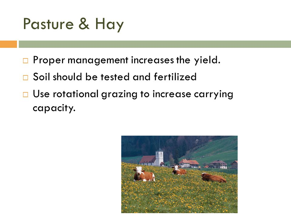 Pasture & Hay  Proper management increases the yield.  Soil should be tested and fertilized  Use rotational grazing to increase carrying capacity.