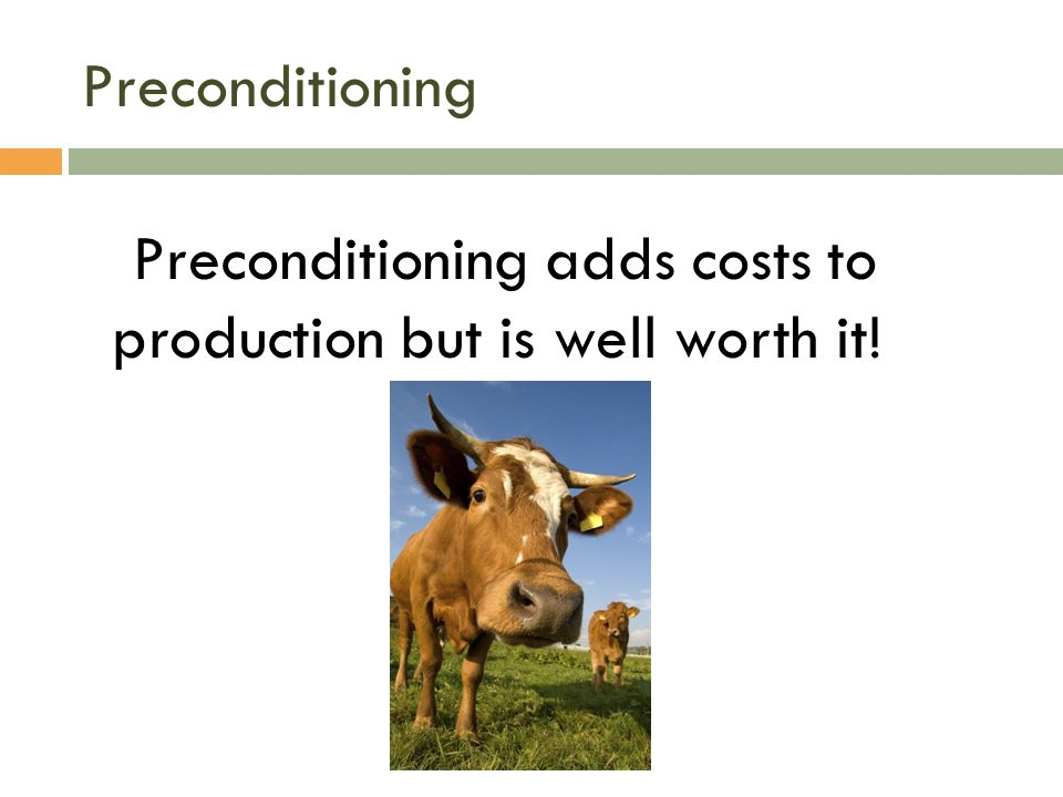 Preconditioning Preconditioning adds costs to production but is well worth it!