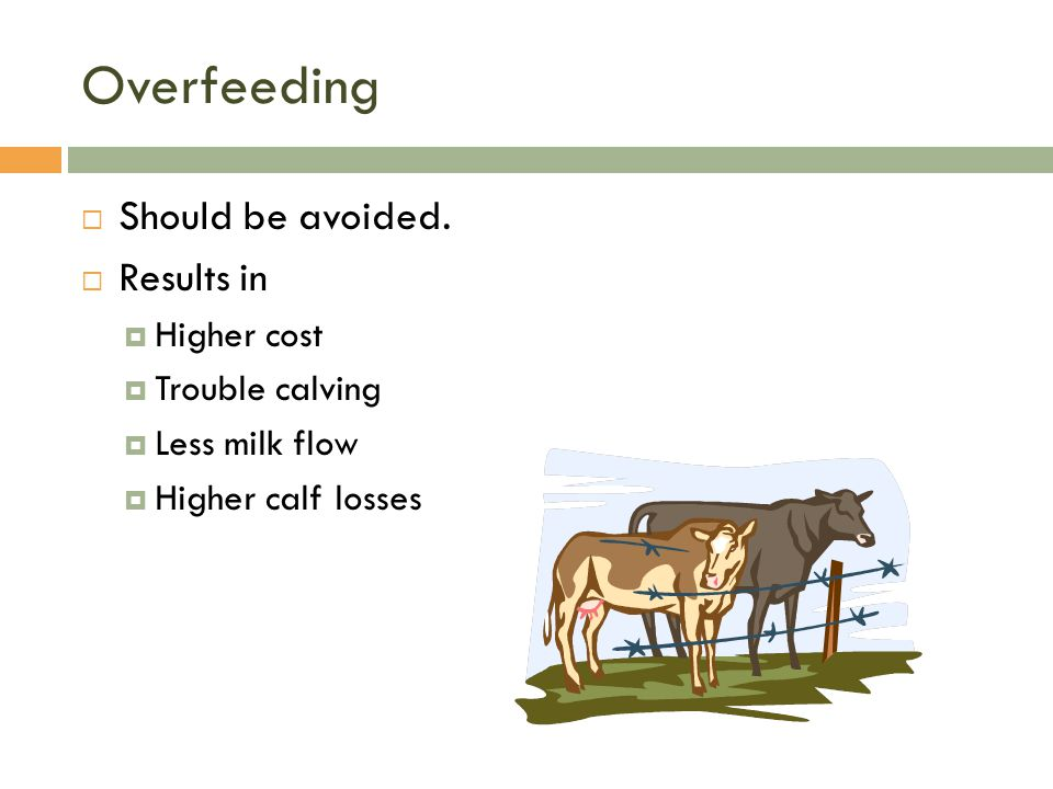 Overfeeding  Should be avoided.  Results in  Higher cost  Trouble calving  Less milk flow  Higher calf losses