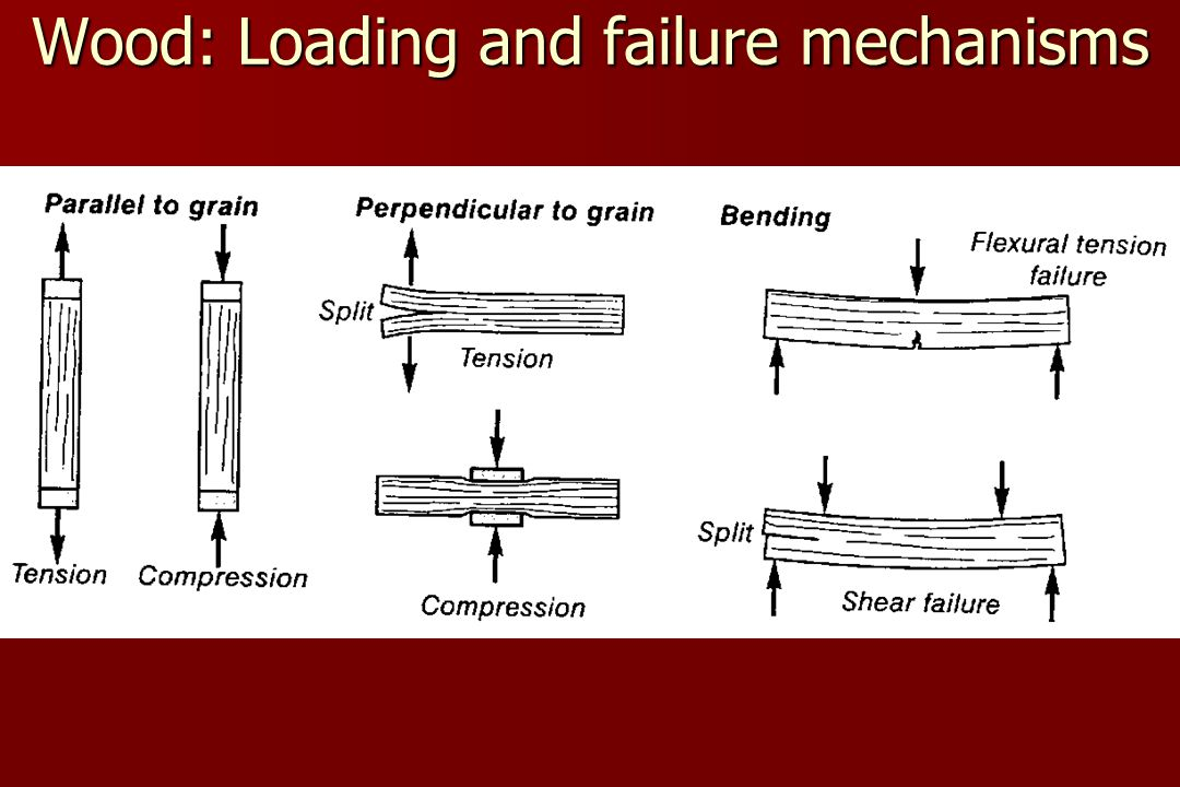 Wood: Loading and failure mechanisms