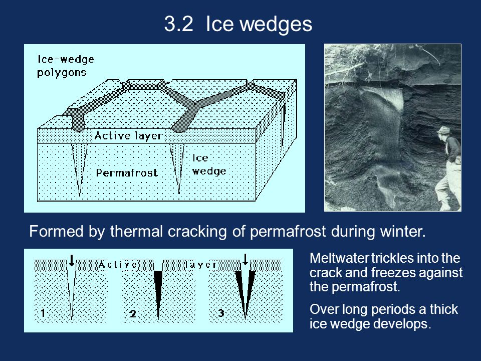 3.2 Ice wedges Formed by thermal cracking of permafrost during winter. Meltwater trickles into the crack and freezes against the permafrost. Over long