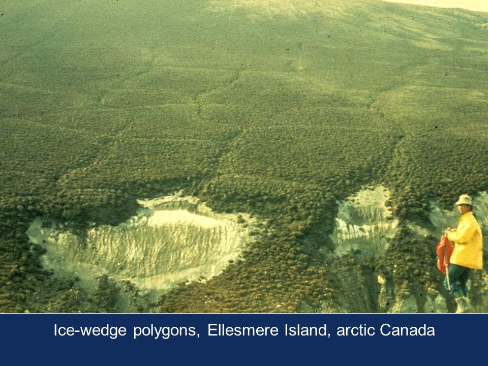 Ice-wedge polygons, Ellesmere Island, arctic Canada