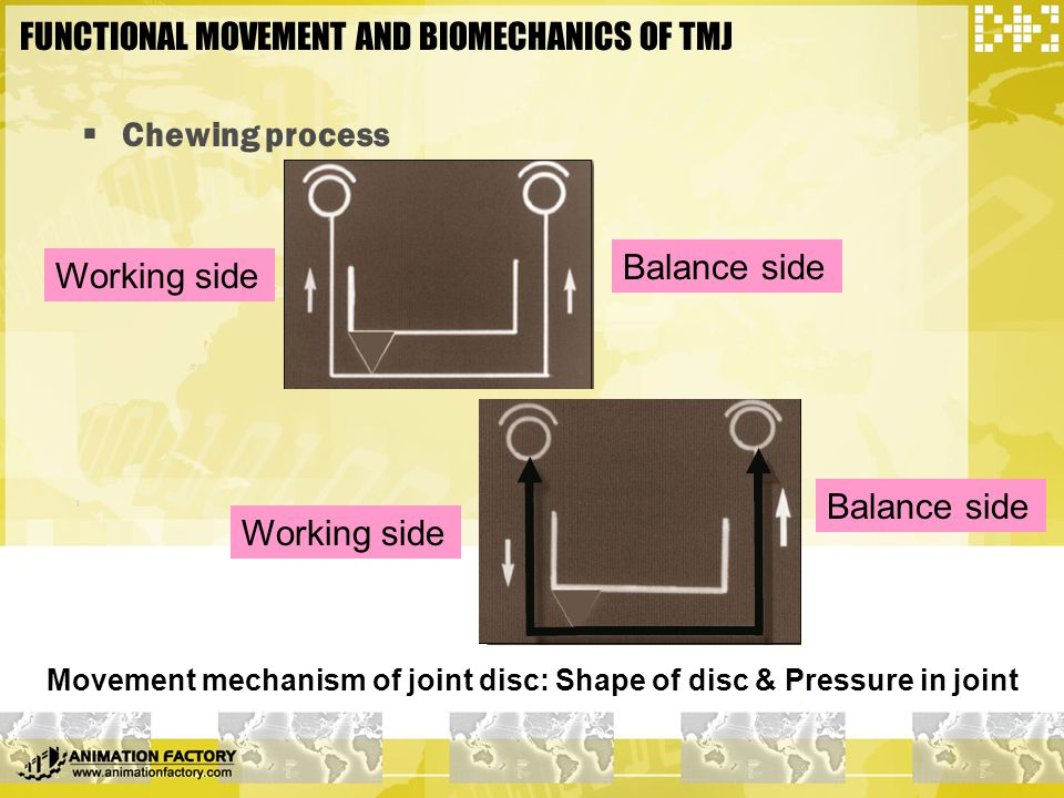 FUNCTIONAL MOVEMENT AND BIOMECHANICS OF TMJ  Chewing process Movement mechanism of joint disc: Shape of disc & Pressure in joint Working side Balance