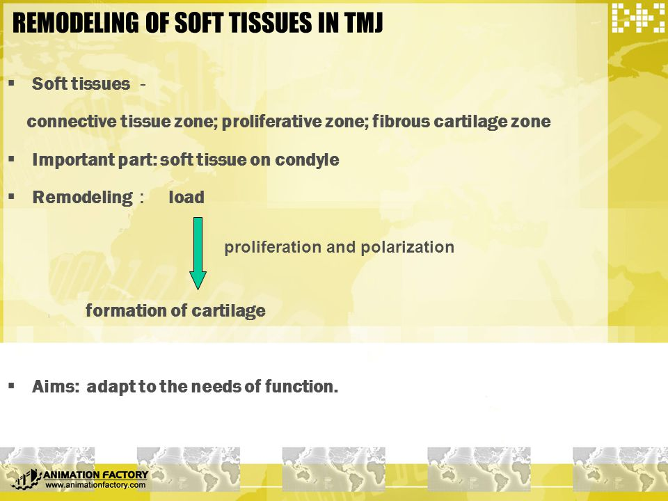 REMODELING OF SOFT TISSUES IN TMJ  Soft tissues - connective tissue zone; proliferative zone; fibrous cartilage zone  Important part: soft tissue on