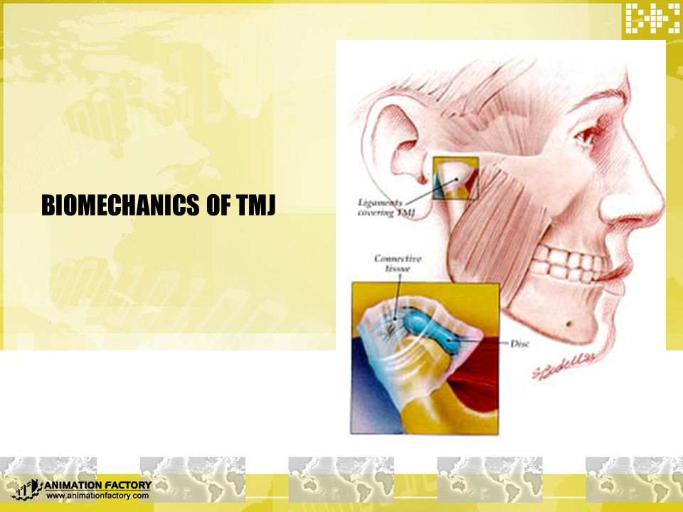  What is biomechanics  Concepts: viscoelastic body; relaxation; creep  Mechanical property of collagen & elastic fiber
