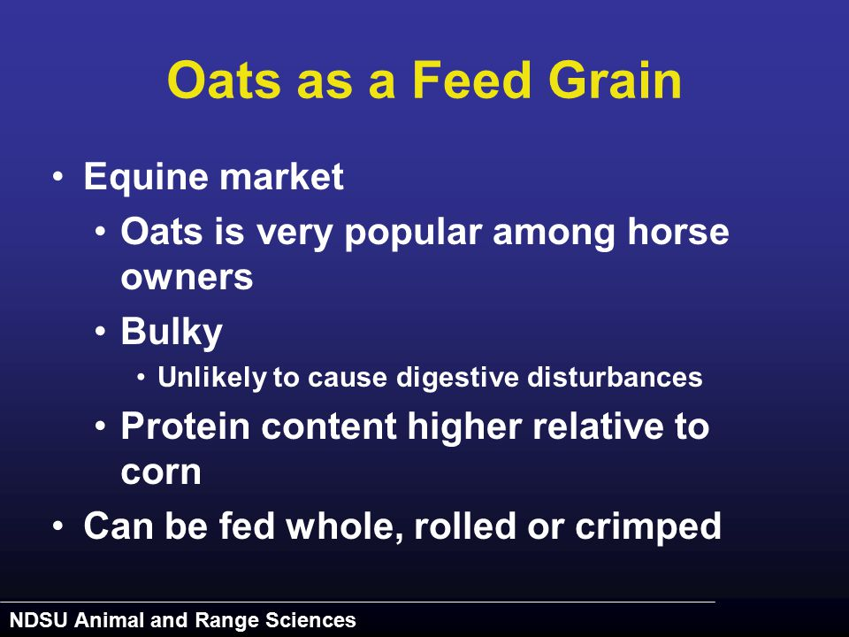 NDSU Animal and Range Sciences Oats as a Feed Grain Equine market Oats is very popular among horse owners Bulky Unlikely to cause digestive disturbanc