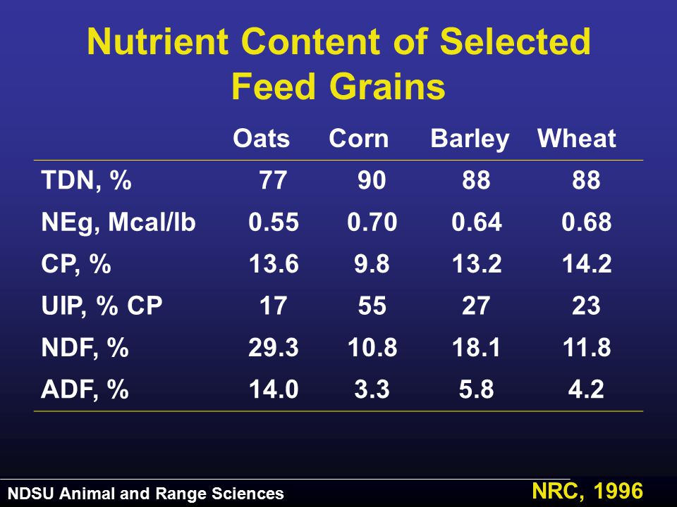 NDSU Animal and Range Sciences Nutrient Content of Selected Feed Grains OatsCornBarleyWheat TDN, %779088 NEg, Mcal/lb0.550.700.640.68 CP, %13.69.813.2