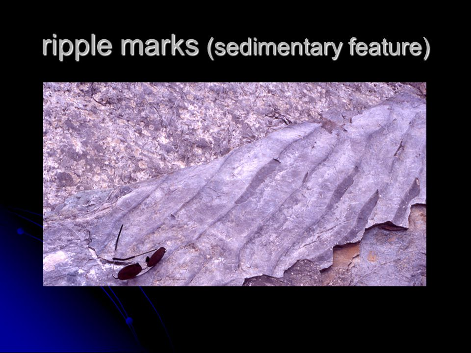 ripple marks (sedimentary feature)