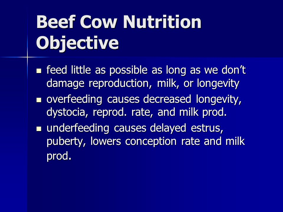 Beef Cow Nutrition Objective feed little as possible as long as we don't damage reproduction, milk, or longevity feed little as possible as long as we don't damage reproduction, milk, or longevity overfeeding causes decreased longevity, dystocia, reprod.