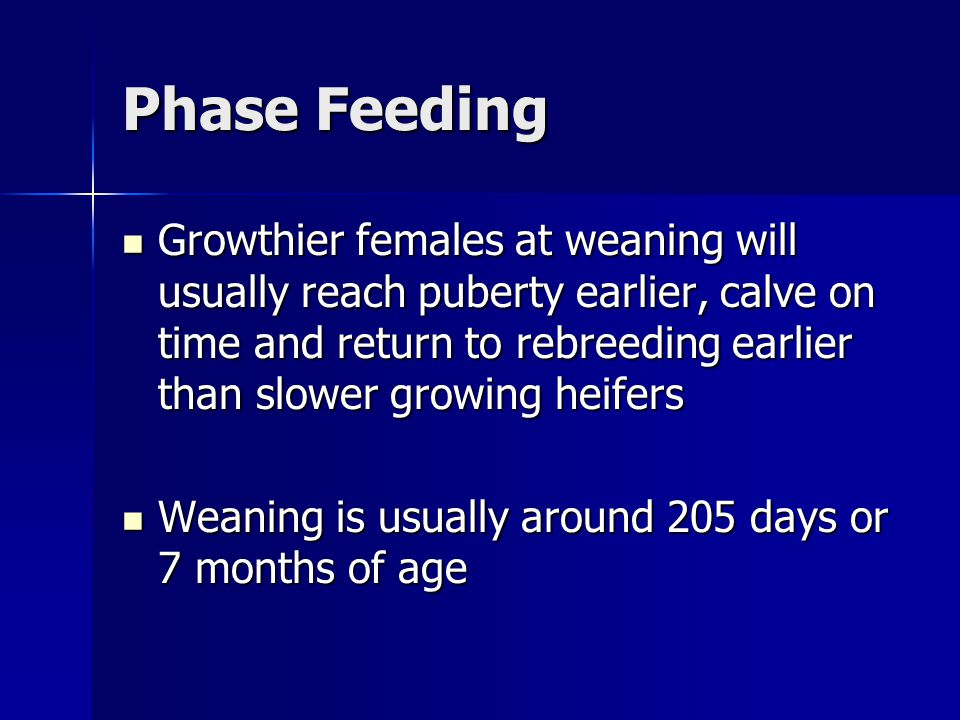 Phase Feeding Growthier females at weaning will usually reach puberty earlier, calve on time and return to rebreeding earlier than slower growing heifers Growthier females at weaning will usually reach puberty earlier, calve on time and return to rebreeding earlier than slower growing heifers Weaning is usually around 205 days or 7 months of age Weaning is usually around 205 days or 7 months of age