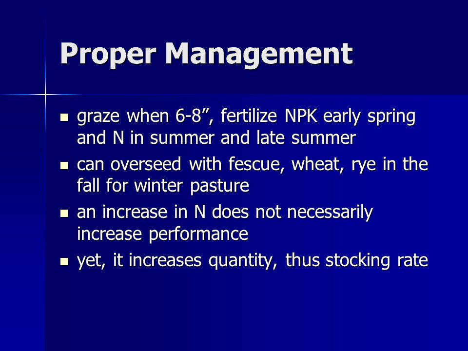 Proper Management graze when 6-8 , fertilize NPK early spring and N in summer and late summer graze when 6-8 , fertilize NPK early spring and N in summer and late summer can overseed with fescue, wheat, rye in the fall for winter pasture can overseed with fescue, wheat, rye in the fall for winter pasture an increase in N does not necessarily increase performance an increase in N does not necessarily increase performance yet, it increases quantity, thus stocking rate yet, it increases quantity, thus stocking rate