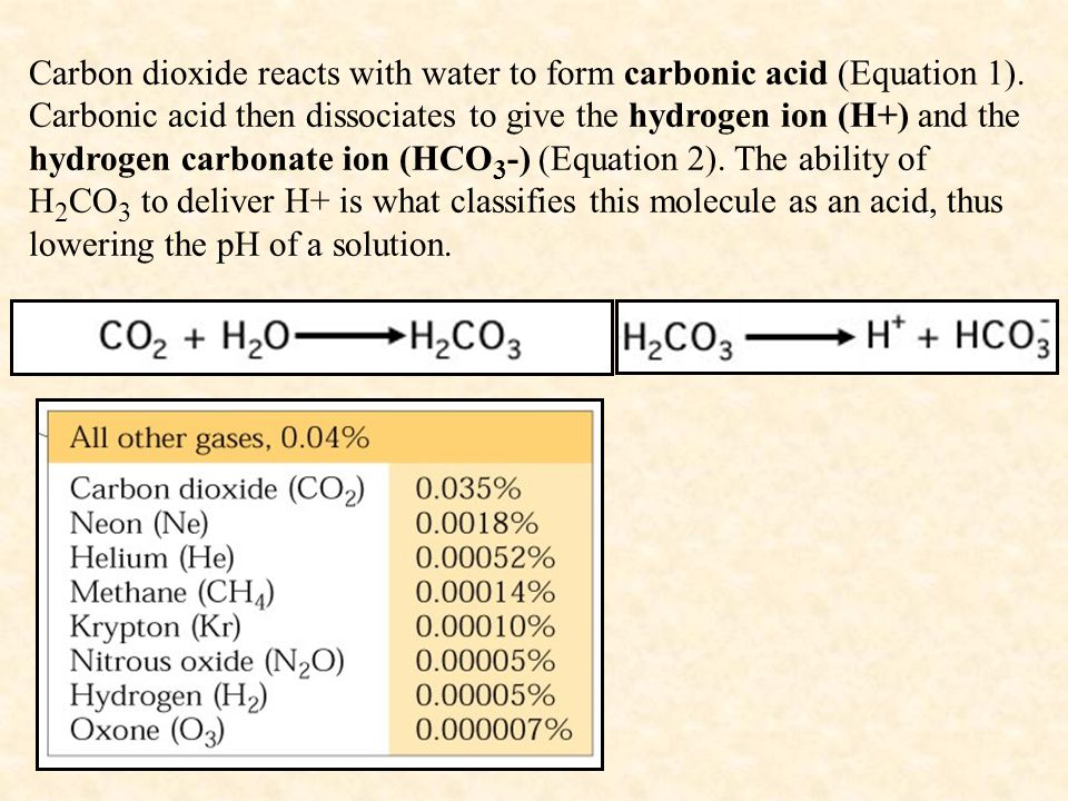 Carbon dioxide reacts with water to form carbonic acid (Equation 1). Carbonic acid then dissociates to give the hydrogen ion (H+) and the hydrogen car
