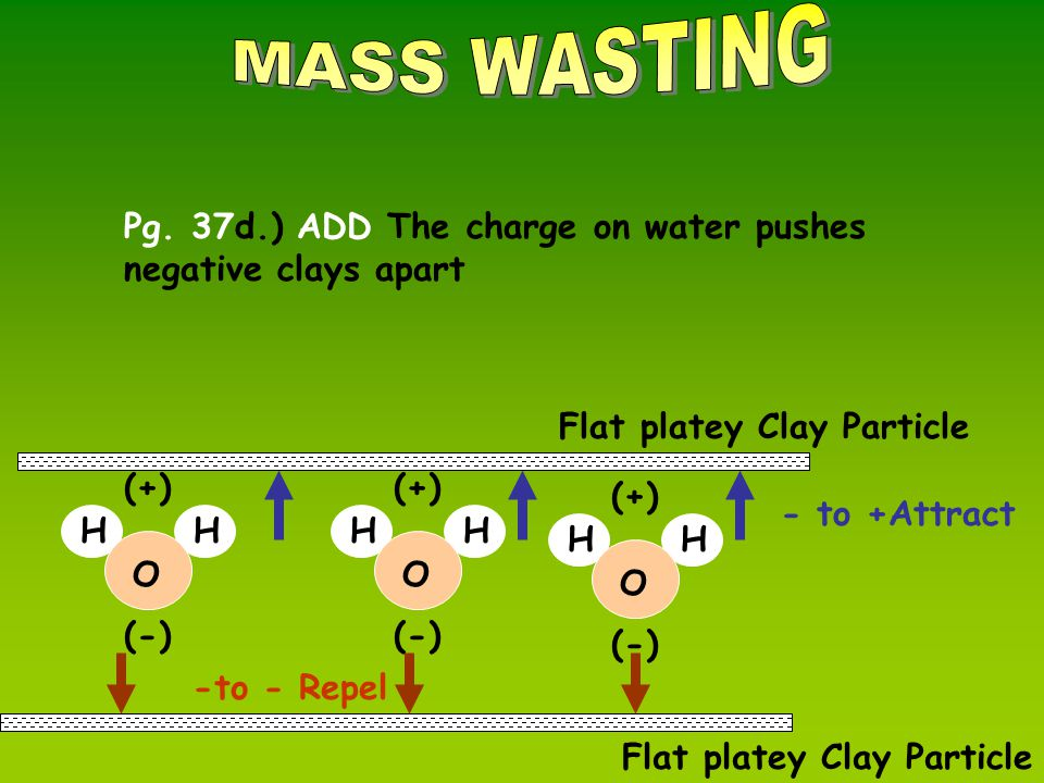 Flat platey Clay Particle O (-) HH (+) O (-) HH (+) O (-) HH (+) - to +Attract Flat platey Clay Particle -to - Repel Pg.