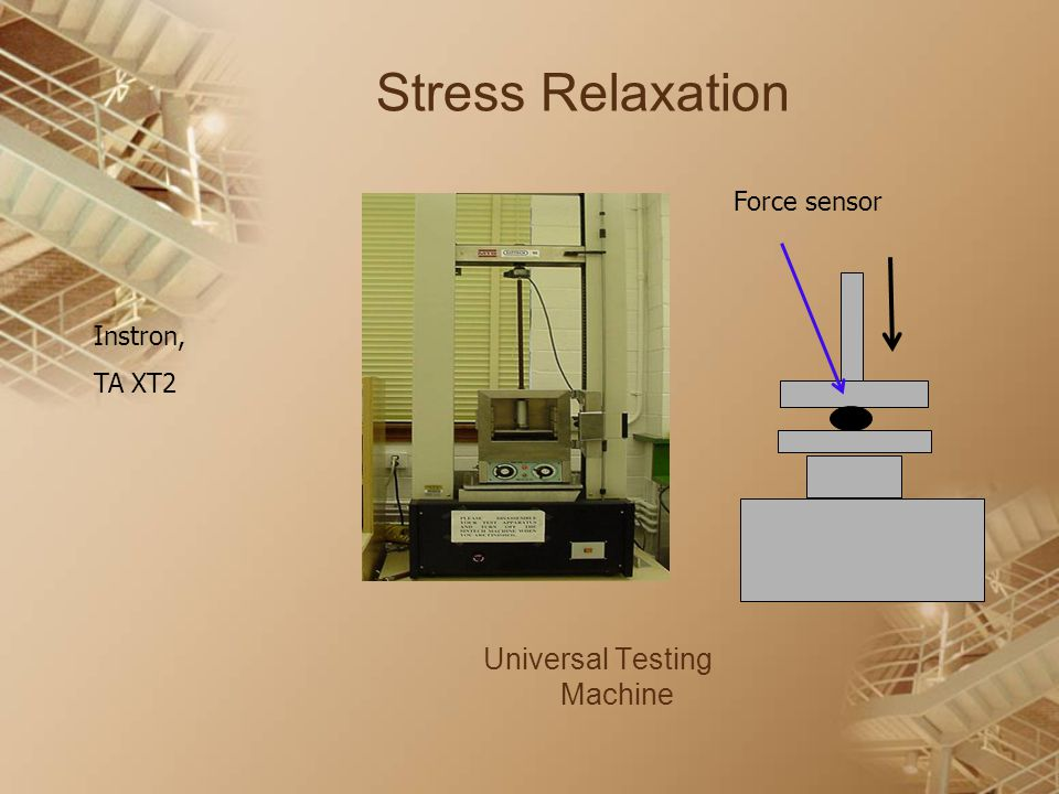 Stress Relaxation Universal Testing Machine Instron, TA XT2 Force sensor