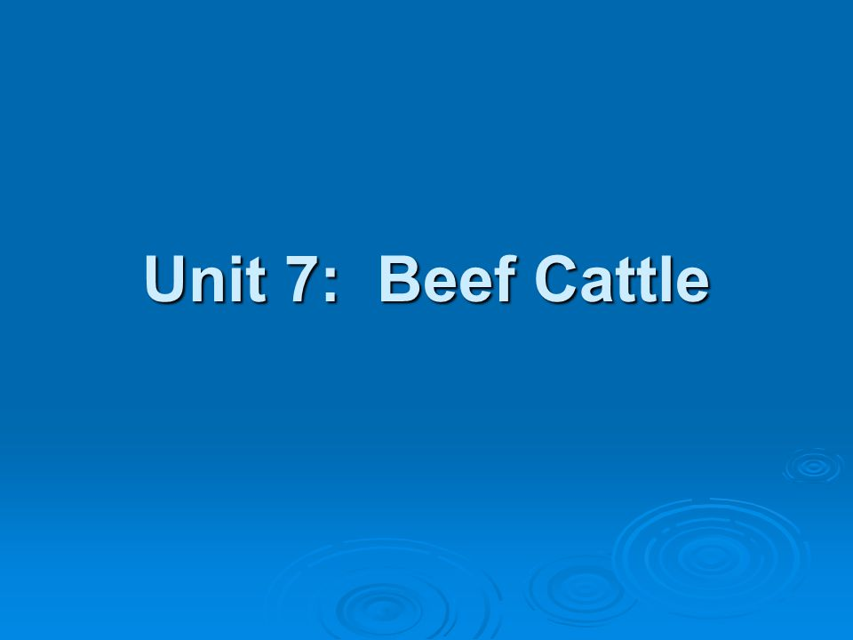Unit 7: Beef Cattle Remove calves from cowsRemove calves from cows No further contact will help the cow dry off quickly No further contact will help the cow dry off quickly Offer creep feed to the calves to reduce stress Offer creep feed to the calves to reduce stress Preconditioned Calves Preconditioned Calves Preparing a feeder calf for the feedlotPreparing a feeder calf for the feedlot MandatoryMandatory Wean and start on feed no less than 30d from shipment Wean and start on feed no less than 30d from shipment Similar ration to the feedlotSimilar ration to the feedlot Castrate, dehorn, treat for grubs no less than 3wks from shipment Castrate, dehorn, treat for grubs no less than 3wks from shipment Vaccinate Vaccinate IBR, PI3, Pasteurella, ClostridialIBR, PI3, Pasteurella, Clostridial Not less than 3wks from saleNot less than 3wks from sale