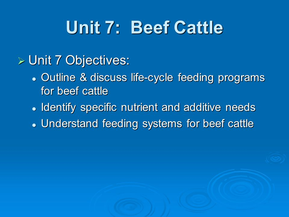 Unit 7: Beef Cattle  The Cow Herd Profitable cow/calf operations should have a high percentage calf crop each year Profitable cow/calf operations should have a high percentage calf crop each year Gestation 280dGestation 280d Recovery & rebreeding should occur within 80-85d postpartumRecovery & rebreeding should occur within 80-85d postpartum Nutritional influence on reproduction Nutritional influence on reproduction Cows gaining wt slightly before breeding will have higher conception rates & shorter time to 1 st heatCows gaining wt slightly before breeding will have higher conception rates & shorter time to 1 st heat Most critical time – 30d prepartum – 70d postpartumMost critical time – 30d prepartum – 70d postpartum