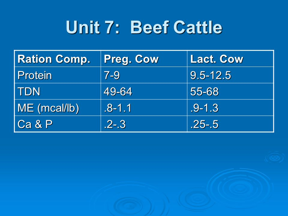Unit 7: Beef Cattle Postweaning Mgmt Postweaning Mgmt Weaning rationWeaning ration FC hay & minerals FC hay & minerals 3-4lb grain 3-4lb grain 425-500lbs BW 425-500lbs BW Winter rationWinter ration 1-1.25lb gain to reach 600-700 lbs.